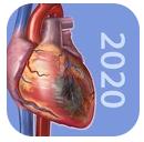 生理和病理学破解版 v1.0.11